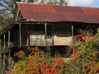 old-house-2